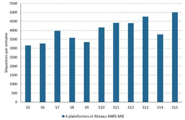 Le nombre de séquences de coronavirus séquencés par la France par semaine, du 1er février au 18