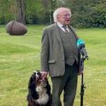 神妙なインタビュー中、手をはむはむ。アイルランド大統領の愛犬がお茶目すぎると話題(癒し動画)