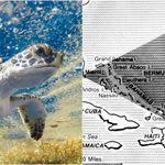 '항공기 감쪽같이 사라진다' 미스터리한 버뮤다 삼각지대 해역의진짜 정체는 매우