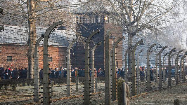 TripAdvisor Removes Insensitive Review Of Auschwitz Museum.jpg