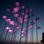 Θεσσαλονίκη: Αύξηση του ιικού φορτίου δείχνουν τα