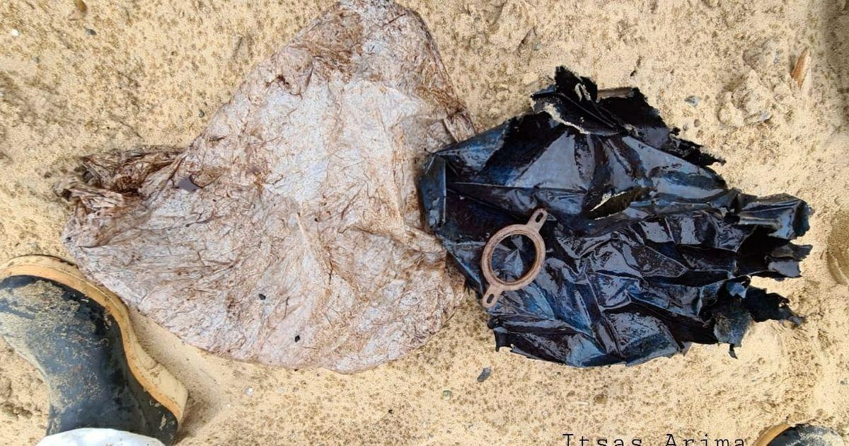 Dans les Landes, une baleine retrouvée échouée avec 16 kilos de plastique dans le ventre