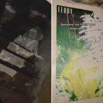 Σενάριο για θρίλερ: Ανακάλυψε κρυφή σκάλα στην ντουλάπα που οδηγούσε σε σκοτεινό