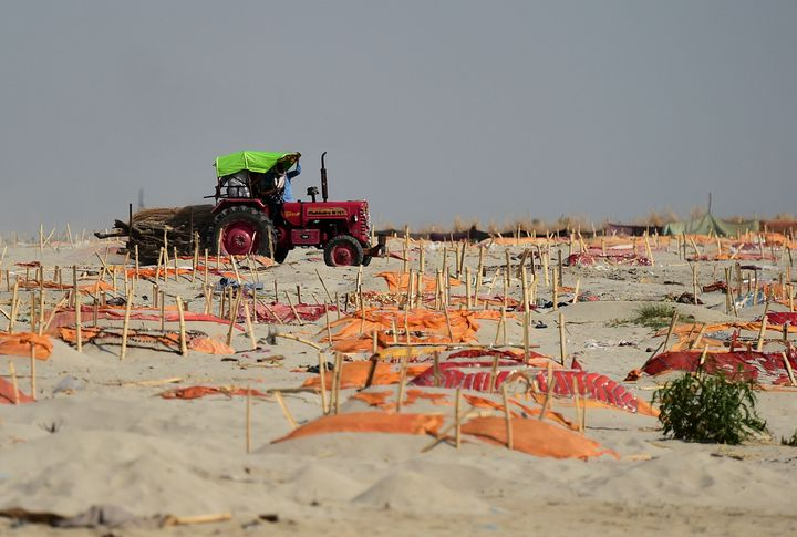 A tractor carries wood logs for cremations past shallow graves on the banks of the Ganges River.