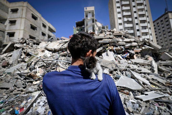 Ahmed Mosabeh, un palestino de 28 años con necesidades especiales, sostiene uno de los varios gatitos de rescate que cuida junto a un destro