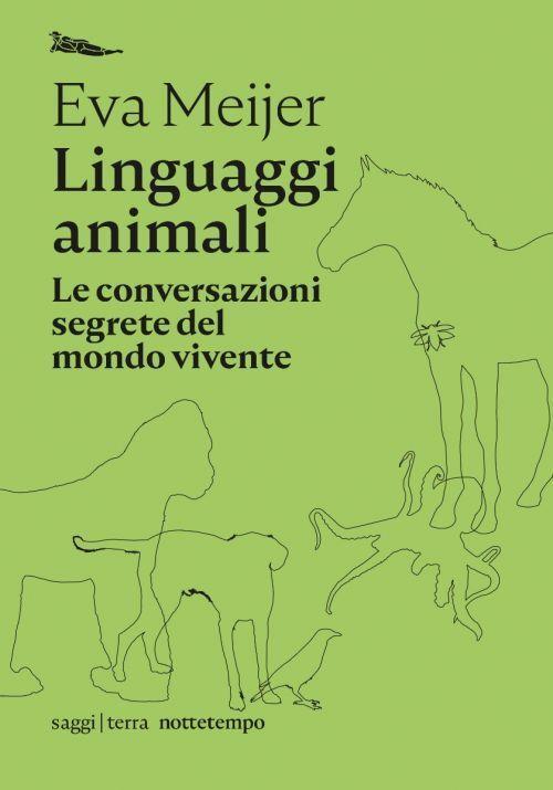 Comprendere le strutture linguistiche degli