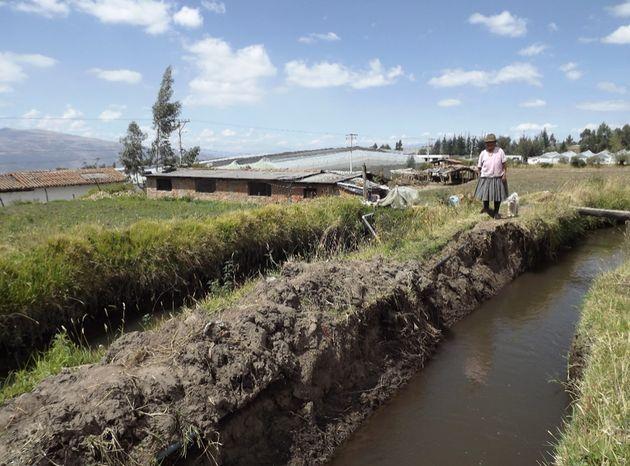 Un canal d'irrigation pour la production de roses à Tabacundo, Équateur.