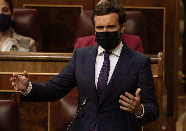 El presidente del PP, Pablo Casado, interviene en la sesión de control al