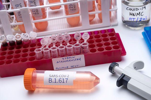 Le variant indien B.1.617 semble plus contagieux que les autres coronavirus, mais il ne s'est pas encore...