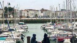 Perdu, un morse se repose dans une barque de pêche du port de La