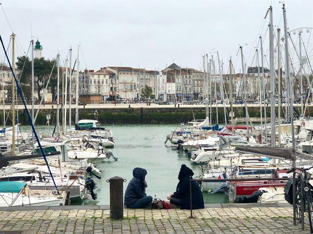 Le port de la Rochelle a un nouvel habitant, un morse qui s'est perdu. (photo