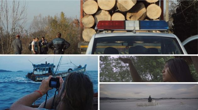 Thriller ambientali, reportage sulla mafia del legno: la natura si fa festival (di M.