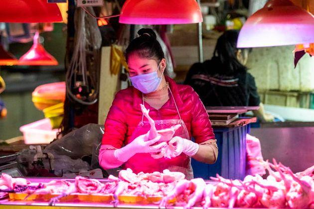 L'influenza aviaria non è solo in Cina, lì può diventare