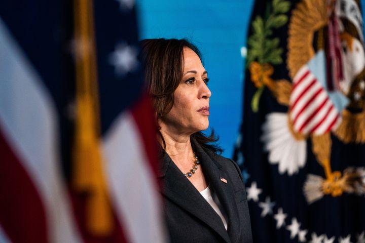 President Joe Biden has said Vice President Kamala Harris will lead his administration's efforts to protect voting righ