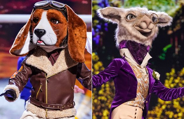 Beagle and Llama were unmasked in Thursday night's