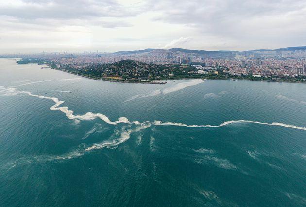 Τουρκία: Μυστηριώδης θαλάσσια γλίτσα σκοτώνει τη ζωή στο