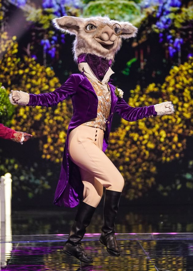Zoe performing as Llama on The Masked