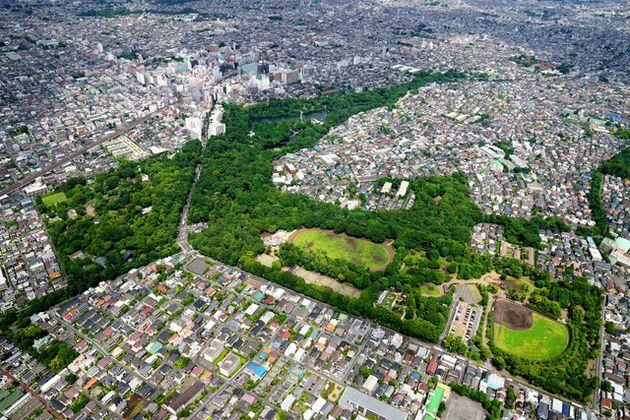 東京五輪のパブリックビューイング会場となる井の頭公園。左上はJR吉祥寺駅=2021年6月5日午後、朝日新聞社ヘリから、加藤諒撮影