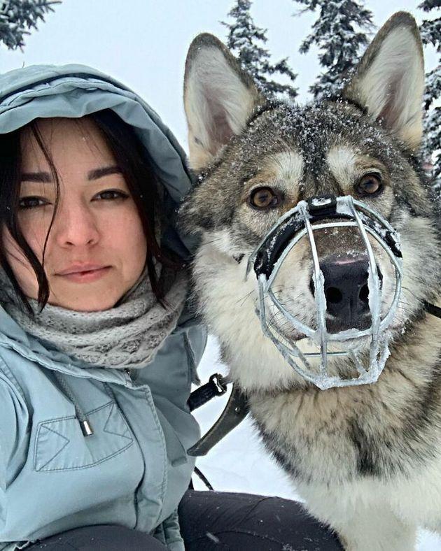 이 러시아 여성은 버려진 야생 아기 늑대를 입양해 훌륭한 반려동물로 키우기 위해 피나는 노력을 쏟았다