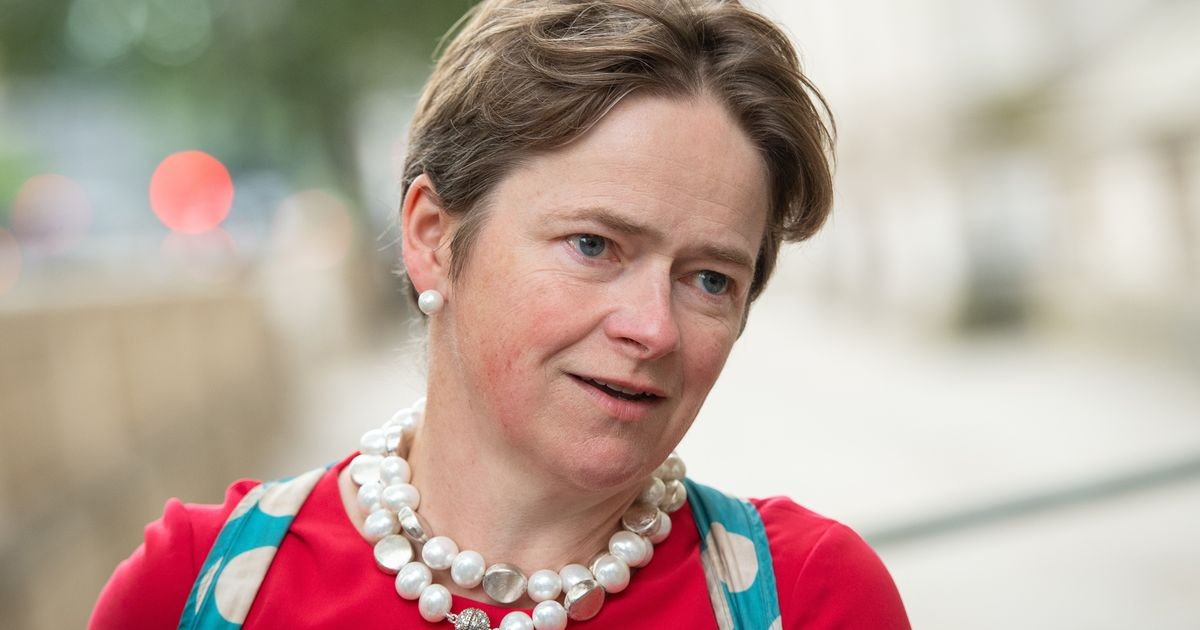 Dido Harding Confirms She Is 'Thinking' About Applying To Be NHS Chief