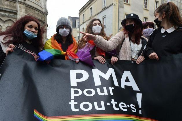 Photo prise lors d'une manifesttaion pro-PMA pour toutes le 30 janvier 2021à Angers(Photo by JEAN-FRANCOIS...