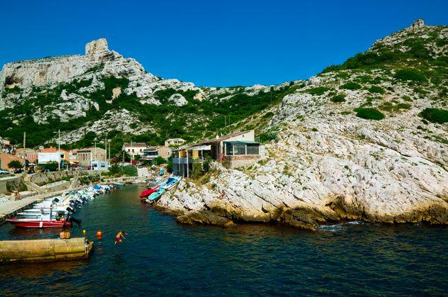 Quelle est cette algue verte qui inquiète dans les calanques de Marseille ? (Photo de la calanque...