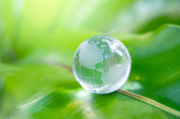 with a glass globe Concept day earth Save the world save environment The world is in the grass of the...