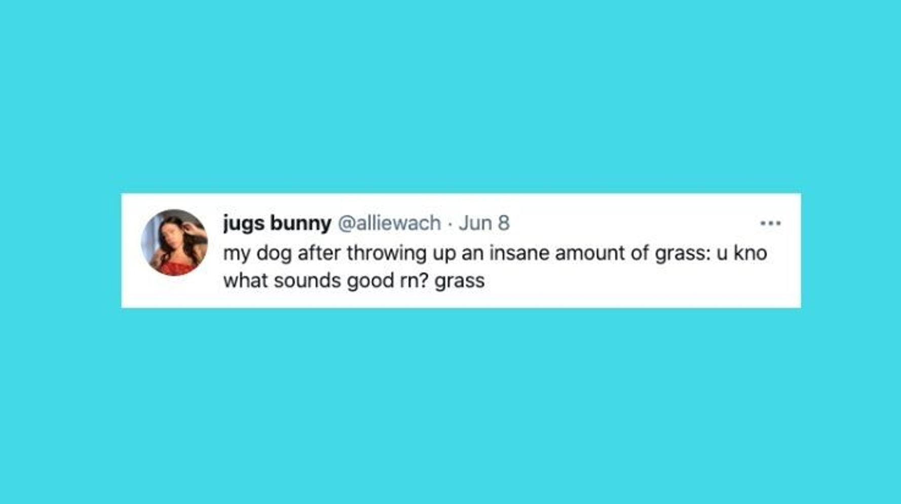 26 Of The Funniest Tweets About Cats And Dogs This Week (June 5-11)