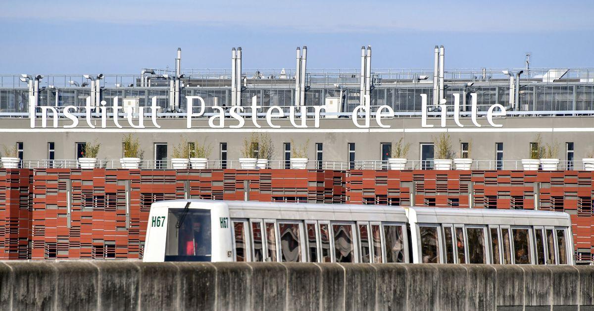L'institut Pasteur de Lille annonce le début de l'essai de son suppositoire anti-Covid