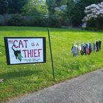 「うちの猫は泥棒です」。盗み癖のある猫、看板を出される ⇒