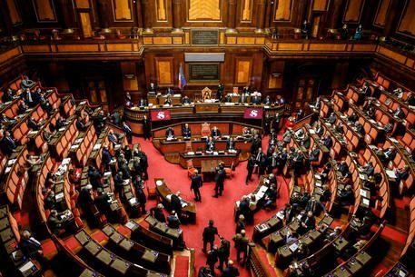 Cercasi legislatore
