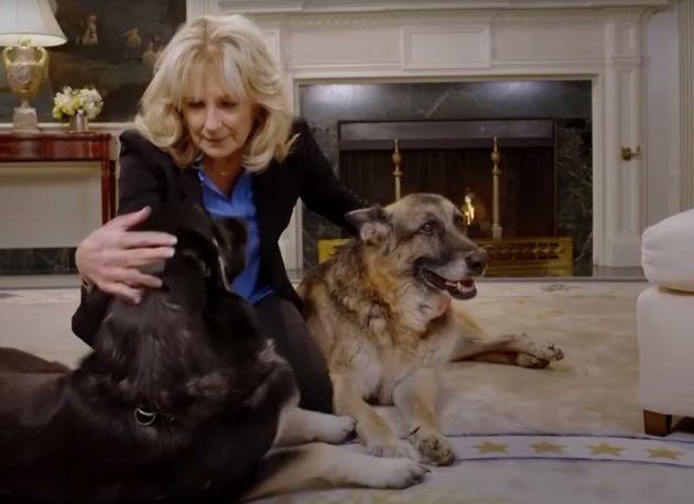 Champ, le chien de Joe et Jill Biden, décède à 13