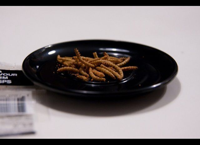 """There was a huge crop of stories (see <a href=""""https://www.huffpost.com/entry/eating-insects-entomophagy_b_1081207"""" target=""""_"""