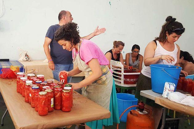 Imagen de un taller de conservde tomate durante el Saltamontes