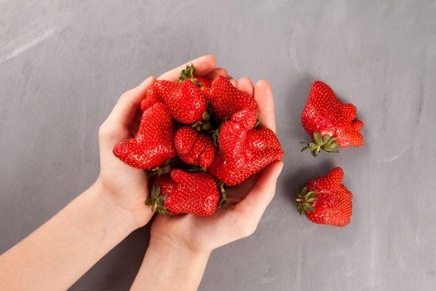 Elogio della frutta