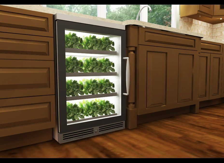 """Later this year, Terra Teach is launching the """"herbNgarden,"""" an under-counter unit about the size of a dishwasher that aeropo"""