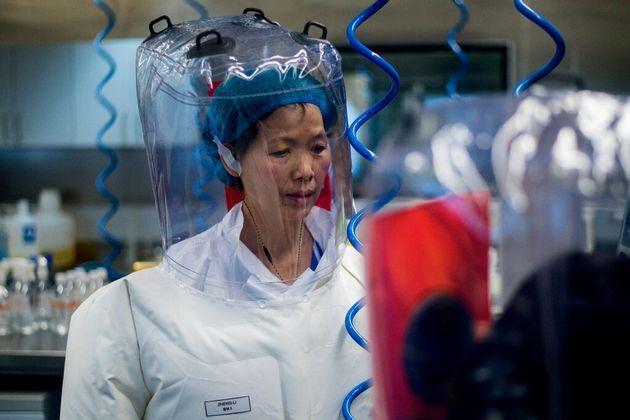 La virologue Shi Zhengli dans le laboratoire P4 de Wuhan , en Chine le 23 février