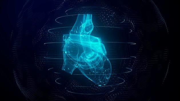 Heart scan, conceptual