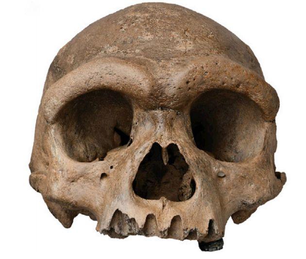 Imagen del cráneo del 'Hombre