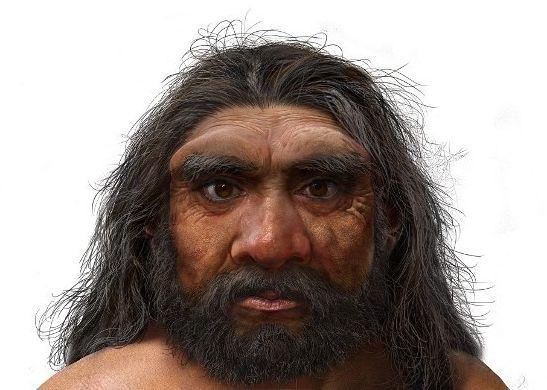 Une illustration de l'Homo Iongi, le 25 juin