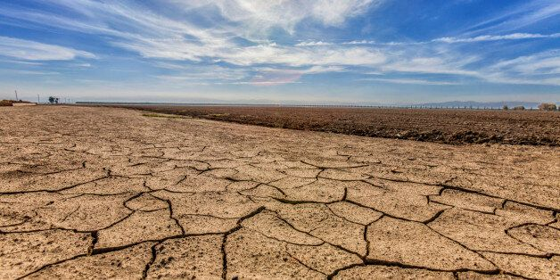 Cracked and dry earth next to fallow crop field, Fresno County, San Joachin Valley