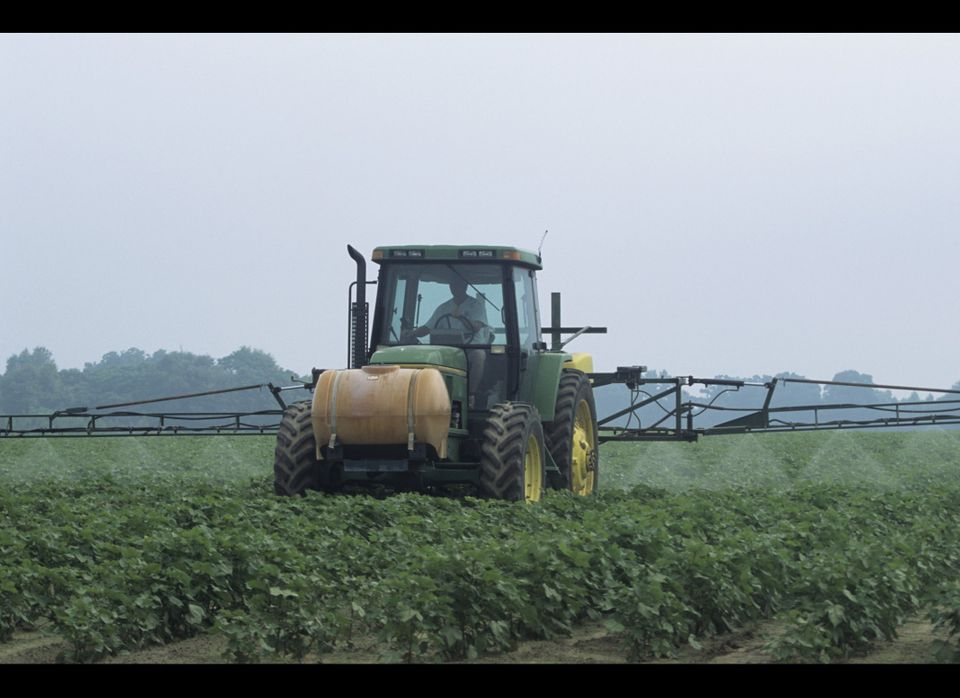 Research does suggest a possible link between ADHD and pesticides.  A 2010 study in <em>Pediatrics</em> found that children