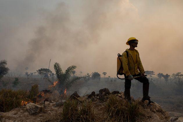 L'Amazzonia stretta da un arco di fuoco: rischia di diventare savana (di M.Forti)