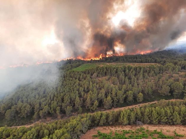 Un incendie dans l'Aude le 3 juillet