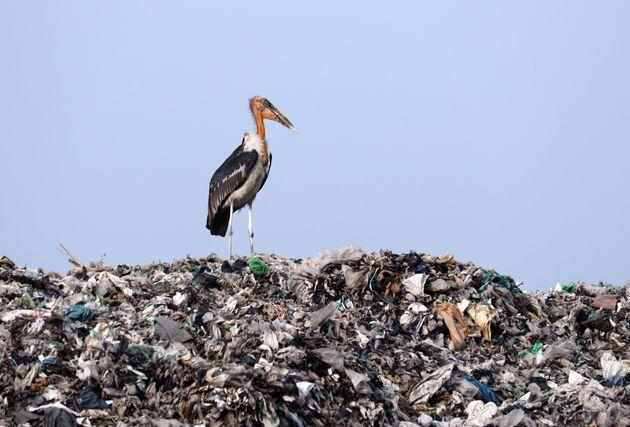 Ε.Ε: Οι φορολογούμενοι πληρώνουν για τον καθαρισμό της περιβαλλοντικής