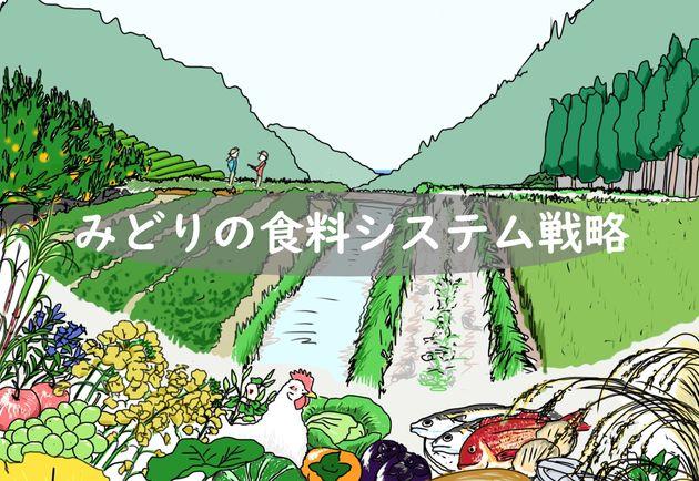 農水省がまとめた「みどりの食料システム戦略」