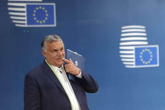 In vigore legge anti-Lgbt in Ungheria. Condanna del Parlamento Ue, Lega e FdI