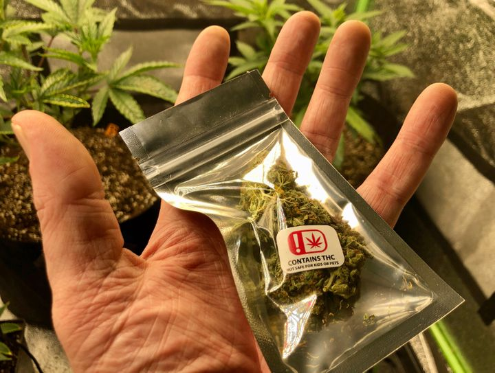 """A man holding a package of medical cannabis """"Moose and Lobster"""" strain grown in Maine and purchased at a dispensary in Rumfor"""