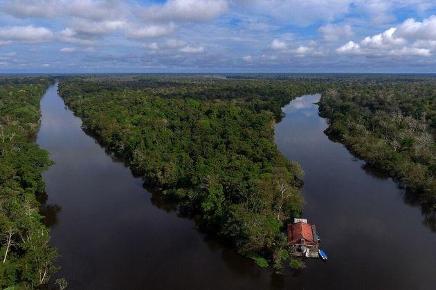 Vue aérienne de la forêt amazonienne près de la réserve de Mamiraua, au Brésil, le 30 juin