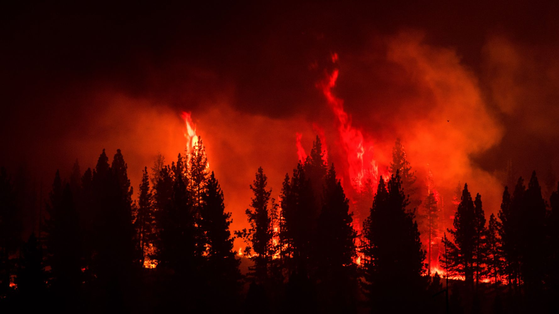 Dangerous Conditions Complicate Efforts To Battle Wildfires Out West